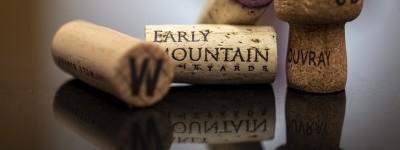 Virginia Wine Expo Auction